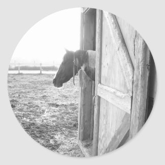 Barn Horse Black and White Photography Round Sticker