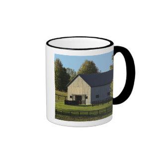Barn on thoroughbred horse farm at sunrise mugs