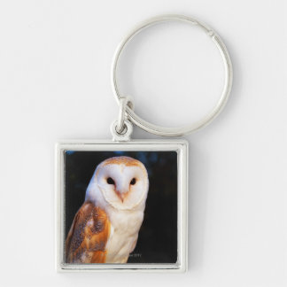 Barn Owl 2 Key Ring