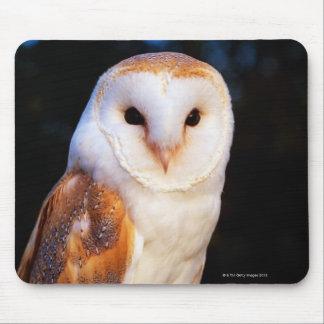 Barn Owl 2 Mouse Pad