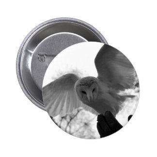 Barn Owl 6 Cm Round Badge