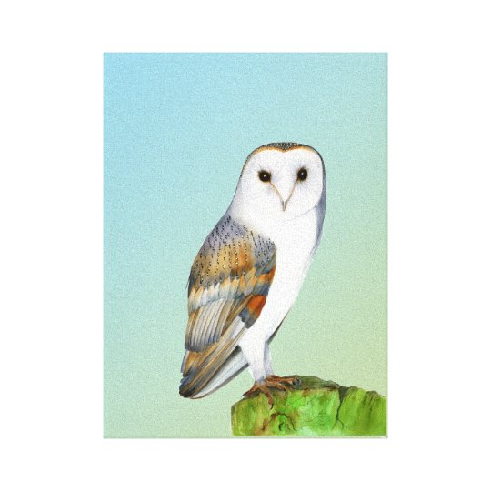 Barn Owl Bird Watercolor Painting Wildlife Artwork Canvas