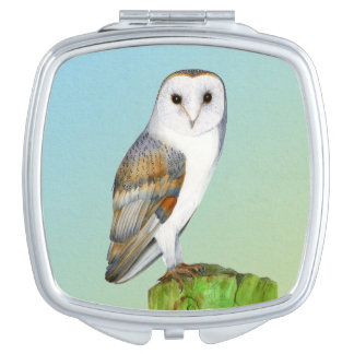Barn Owl Bird Watercolor Painting Wildlife Artwork Compact Mirror