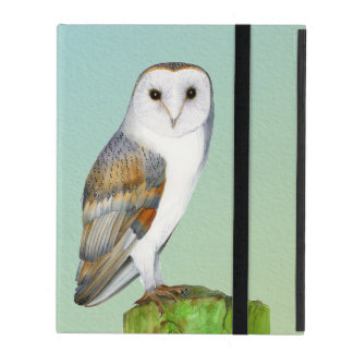 Barn Owl Bird Watercolor Painting Wildlife Artwork iPad Cover