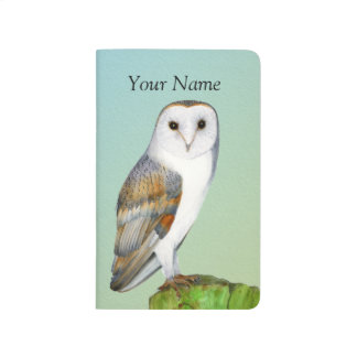 Barn Owl Bird Watercolor Painting Wildlife Artwork Journal