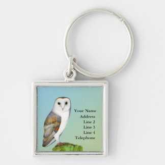 Barn Owl Bird Watercolor Painting Wildlife Artwork Silver-Colored Square Key Ring