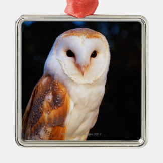 Barn Owl Christmas Ornament