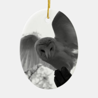 Barn Owl Christmas Ornament