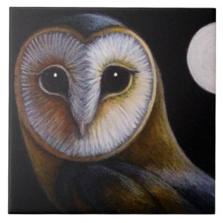 BARN OWL CLOSE UP & FULL MOON TILE