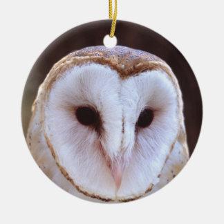 barn owl face christmas ornament