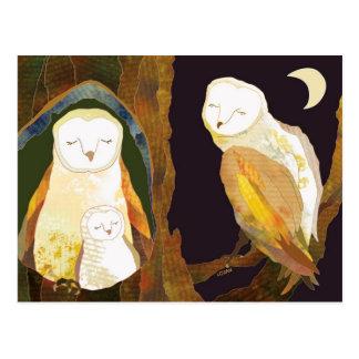Barn Owl Family Postcards