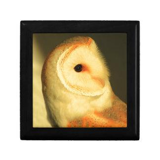 Barn owl gift box