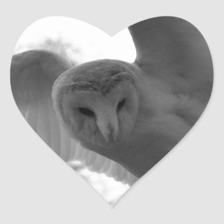 Barn Owl Heart Sticker