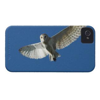 Barn Owl in Daytime Flight iPhone 4 Case