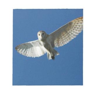 Barn Owl in Daytime Flight Notepad