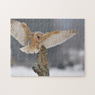 Barn owl landing to spike jigsaw puzzle