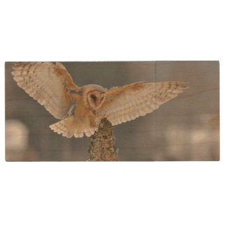 Barn owl landing to spike wood USB 2.0 flash drive