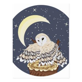 Barn Owl on a Tree Stump Postcard