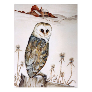 Barn Owl on the hunt Postcard