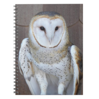 Barn Owl Photo Notebook