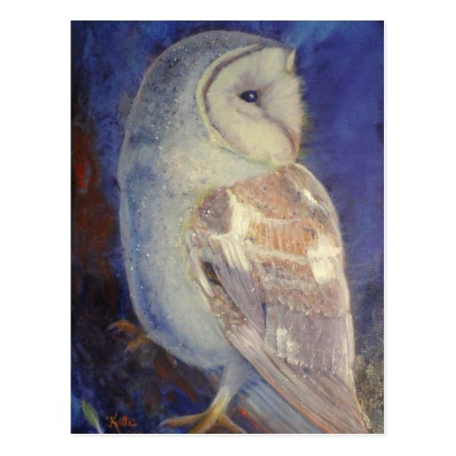 Barn Owl Postcards