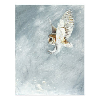 Barn Owl swooping with claws out Postcards