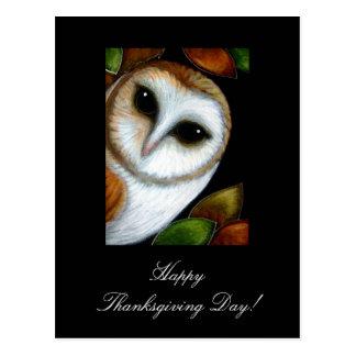 Barn Owl Thanksgiving  Postcard