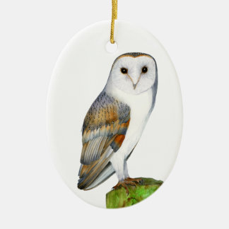Barn Owl Tyto Alba Watercolor Artwork Print Christmas Ornament