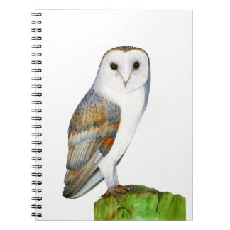 Barn Owl Tyto Alba Watercolor Artwork Print Spiral Notebook