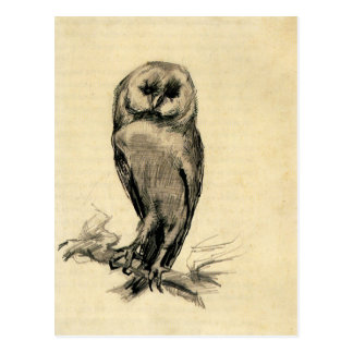Barn Owl Viewed from the Front by Vincent van Gogh Postcard