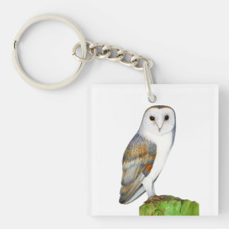 Barn Owl Watercolor Artwork Jewellery and Bags Key Ring