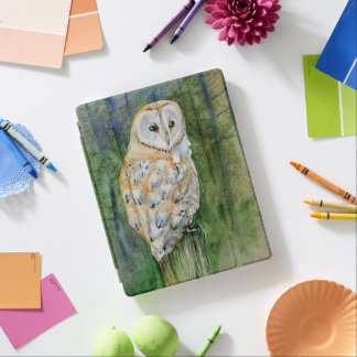 Barn owl watercolor iPad cover