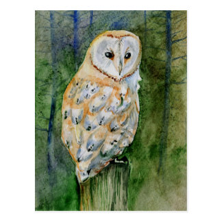 Barn owl watercolor post cards