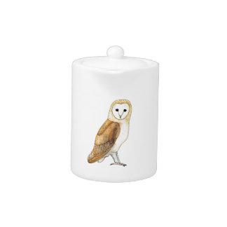 Barn Owl watercolour