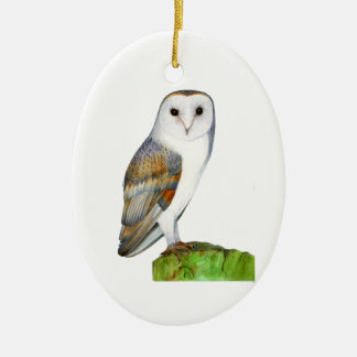 Barn Owl Watercolour Painting Ceramic Oval Decoration