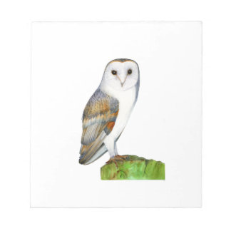 Barn Owl Watercolour Painting Notepad