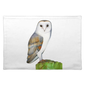 Barn Owl Watercolour Painting Placemat