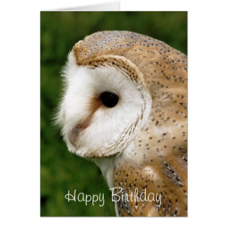 BARN OWLS CARD