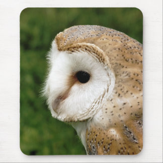 BARN OWLS MOUSE MAT