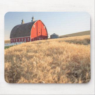 Barn, summer wheat fields near Sprague, Eastern 1 Mouse Mat