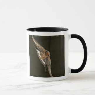 Barn Swallow in flight Mug