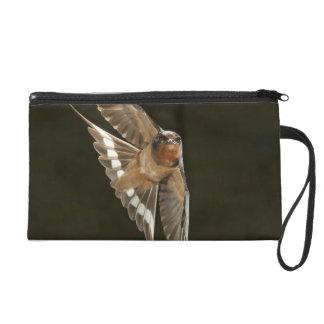 Barn Swallow in flight Wristlet