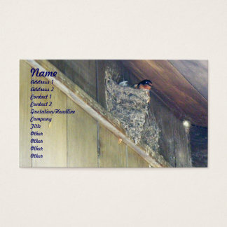 Barn Swallow Series Business Card