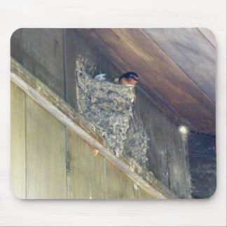 Barn Swallow Series Mouse Pad