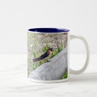 Barn Swallow Series Two-Tone Mug