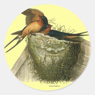 Barn Swallows Sticker