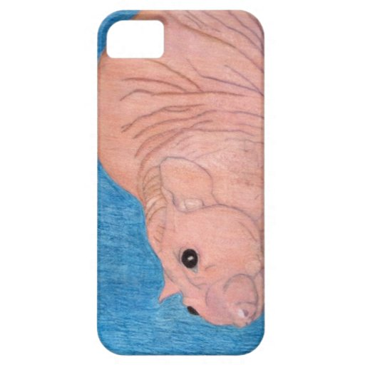 Barney, The Hairless Rat iPhone 5/5S Cases