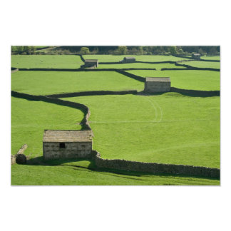 Barns and dry stone walls photo