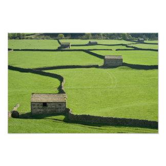 Barns and dry stone walls photo print
