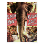Barnum & Bailey and Ringling Bros Combined - Eleph Poster